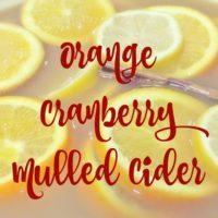 Orange Cranberry Mulled Cider