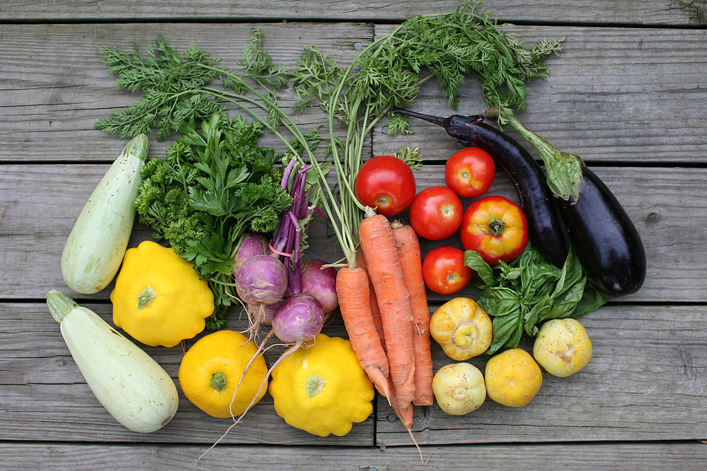 CSA Community Supported Agriculture