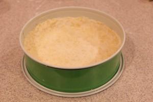 Rhubarb Cake with Murbeteig Crust