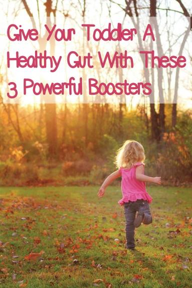 Healthy Gut
