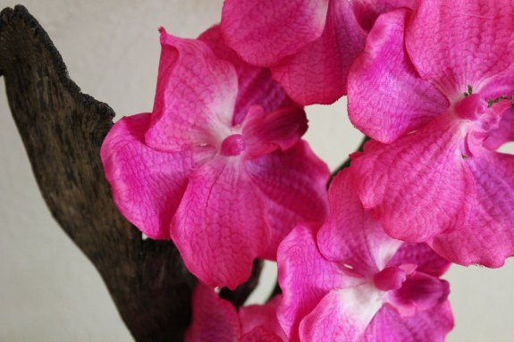 Silk Plants Direct Orchid