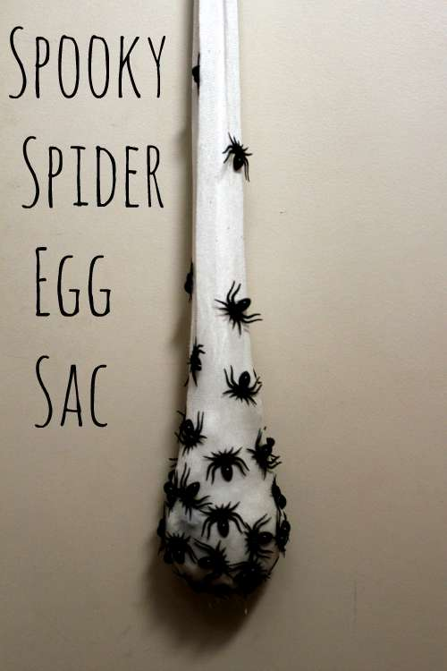 DIY Spider Egg Sac