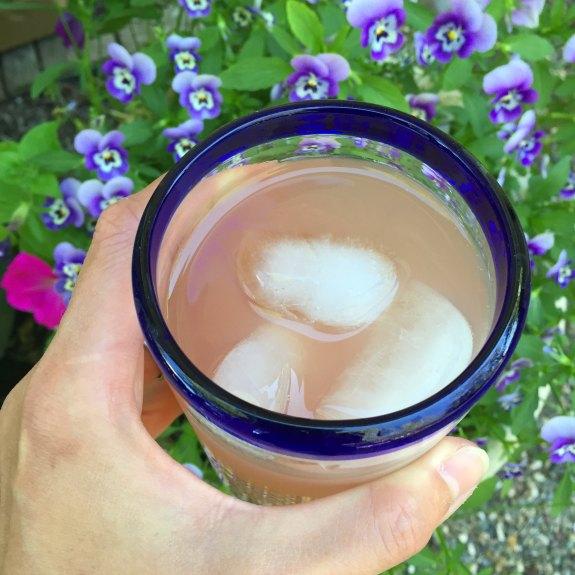Santa Cruz Organics Agua Fresca