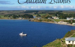 Journey Back in Time to the Chatham Islands