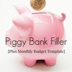 Piggy Bank Filler