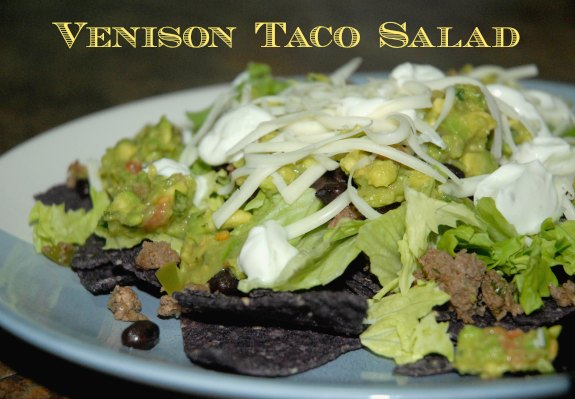 Venison Taco Salad