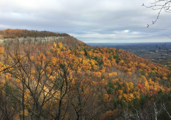 Thacher Park Indian Ladder Trail Foliage