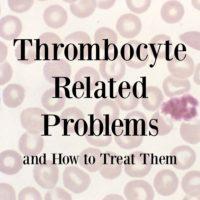 Thrombocyte