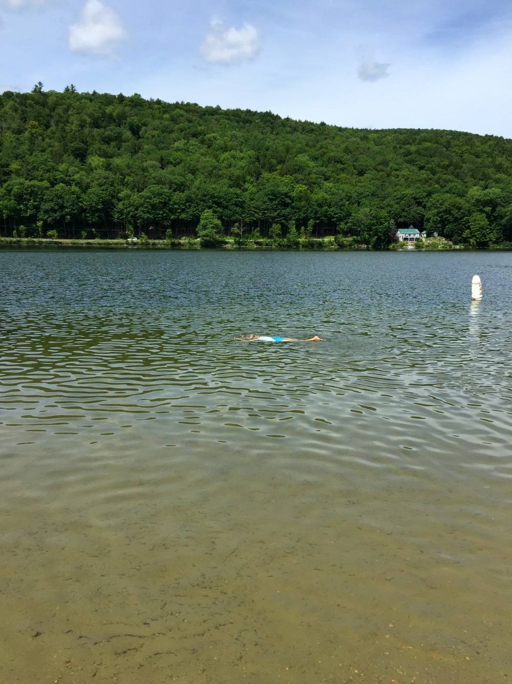 Coolidge State Park, Plymouth, VT
