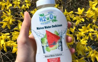 h2wow watermelon water enhancer