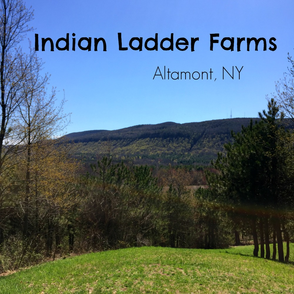 Indian Ladder Farms