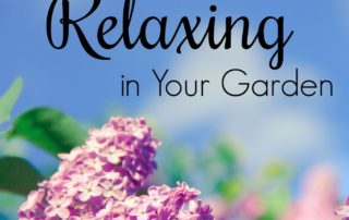 6 Secrets to Relaxing in Your Garden