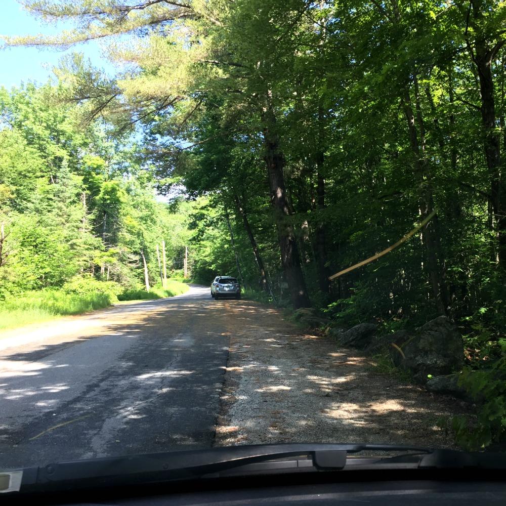 Buttermilk Falls Ludlow Vermont