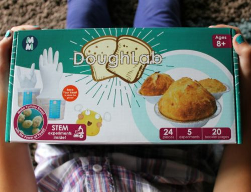 Learning Through Cooking with the DoughLab STEM Kit for Kids