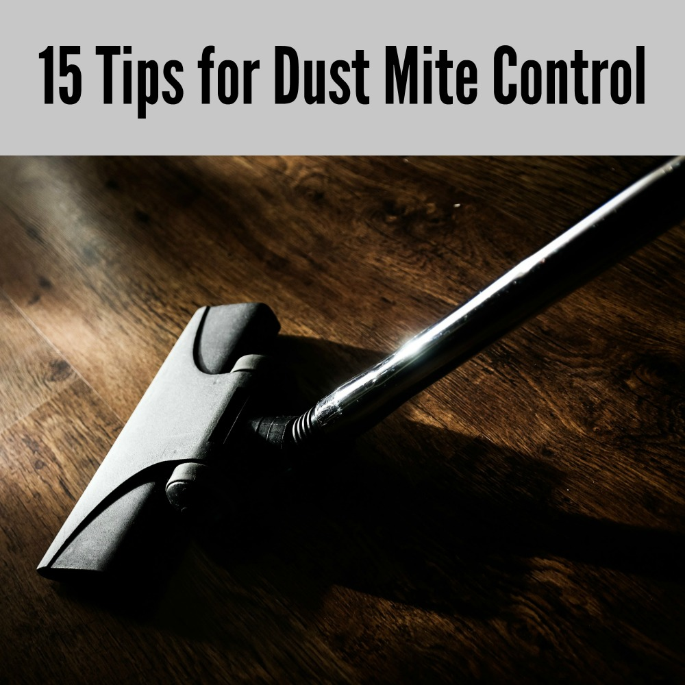 15 Tips for Dust Mite Control