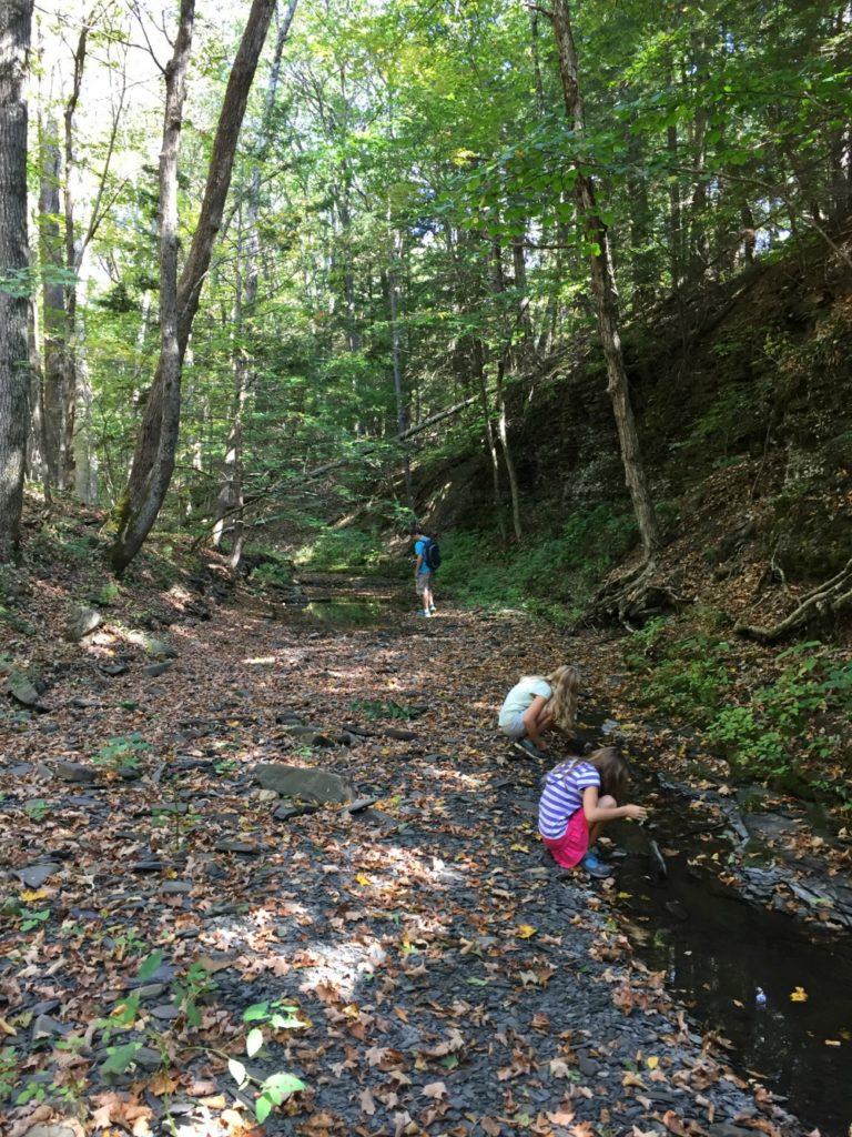 Hannacroix Creek