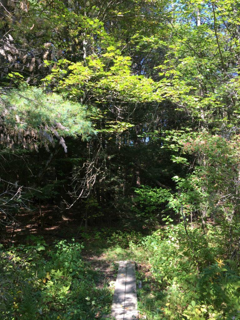 Hannacroix Trail Head