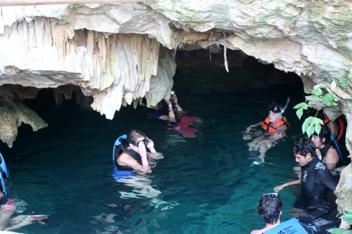 Casa Tortuga Cenote Wisho