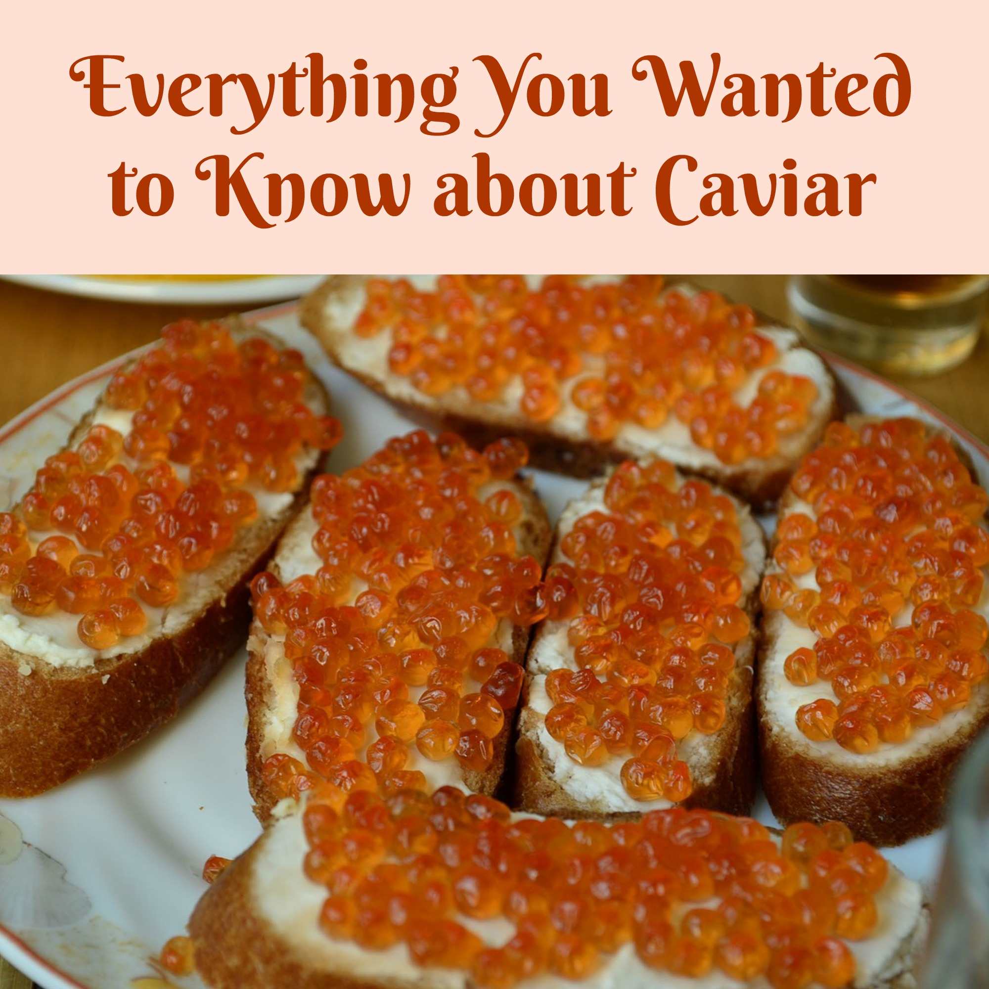 Everything You Wanted to Know about Caviar