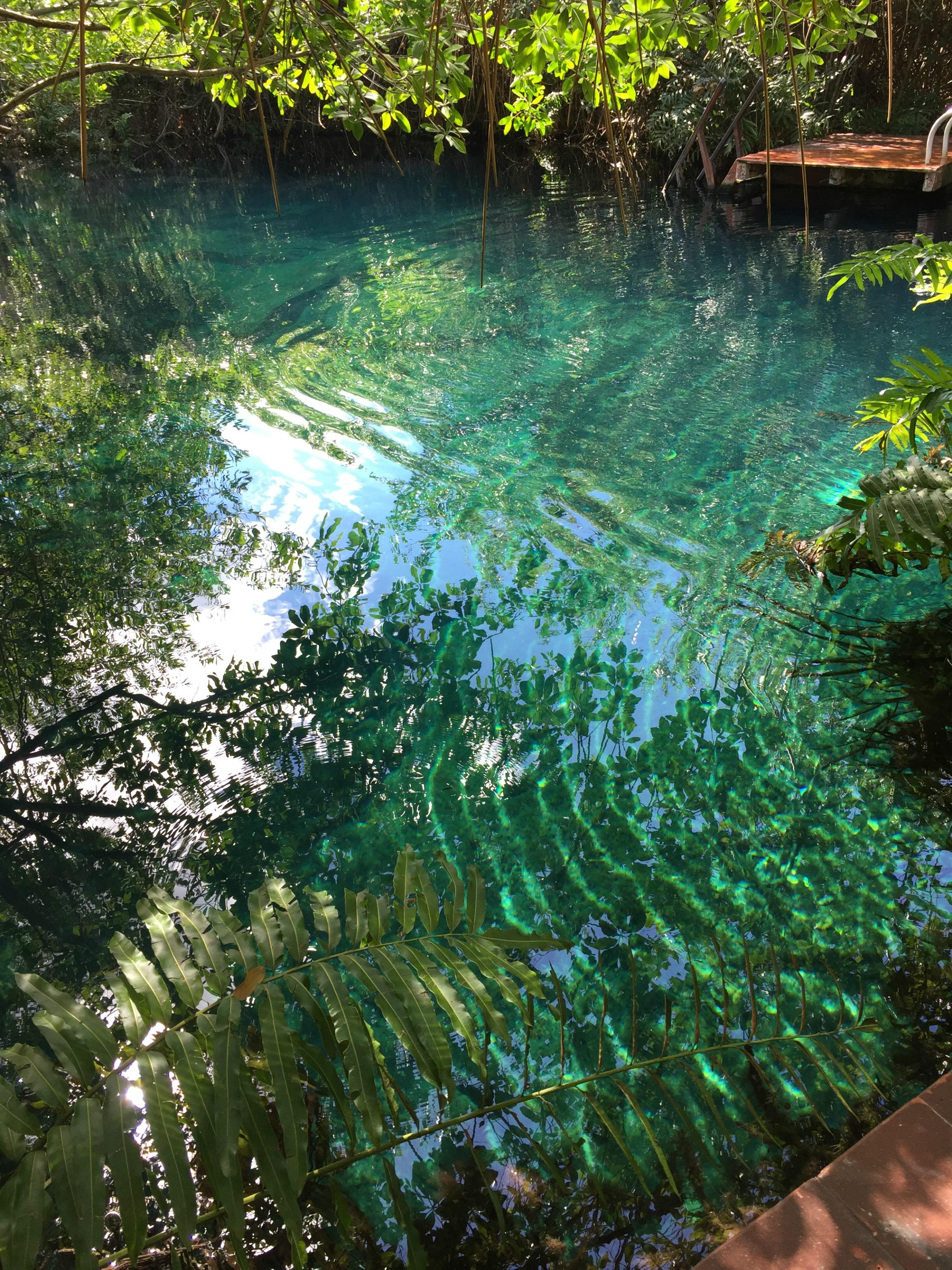 Hacienda Tres Rios Cenote