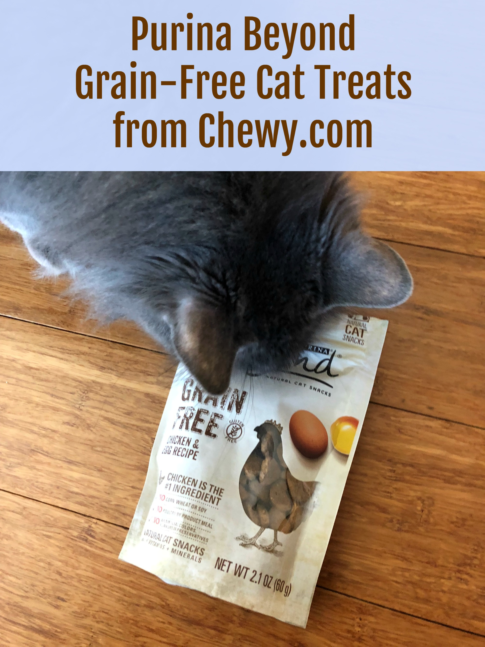 Purina Beyond Cat Treats Chewy.com