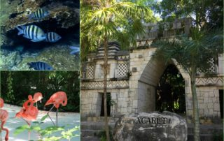 Xcaret Tips
