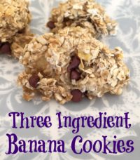 Three Ingredient Banana Cookies