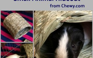 Chewy Oxbow Small Animal House