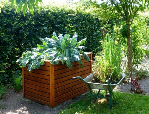 5 Gardening Lessons You Need To Teach Your Kids