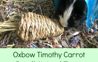 Oxbow Timothy Carrot Chewy.com