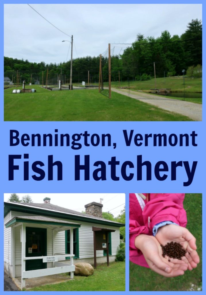Bennington Vermont Fish Hatchery