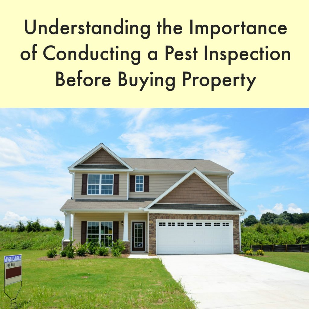 Understanding The Importance of Conducting A Pest Inspection Before Buying Property