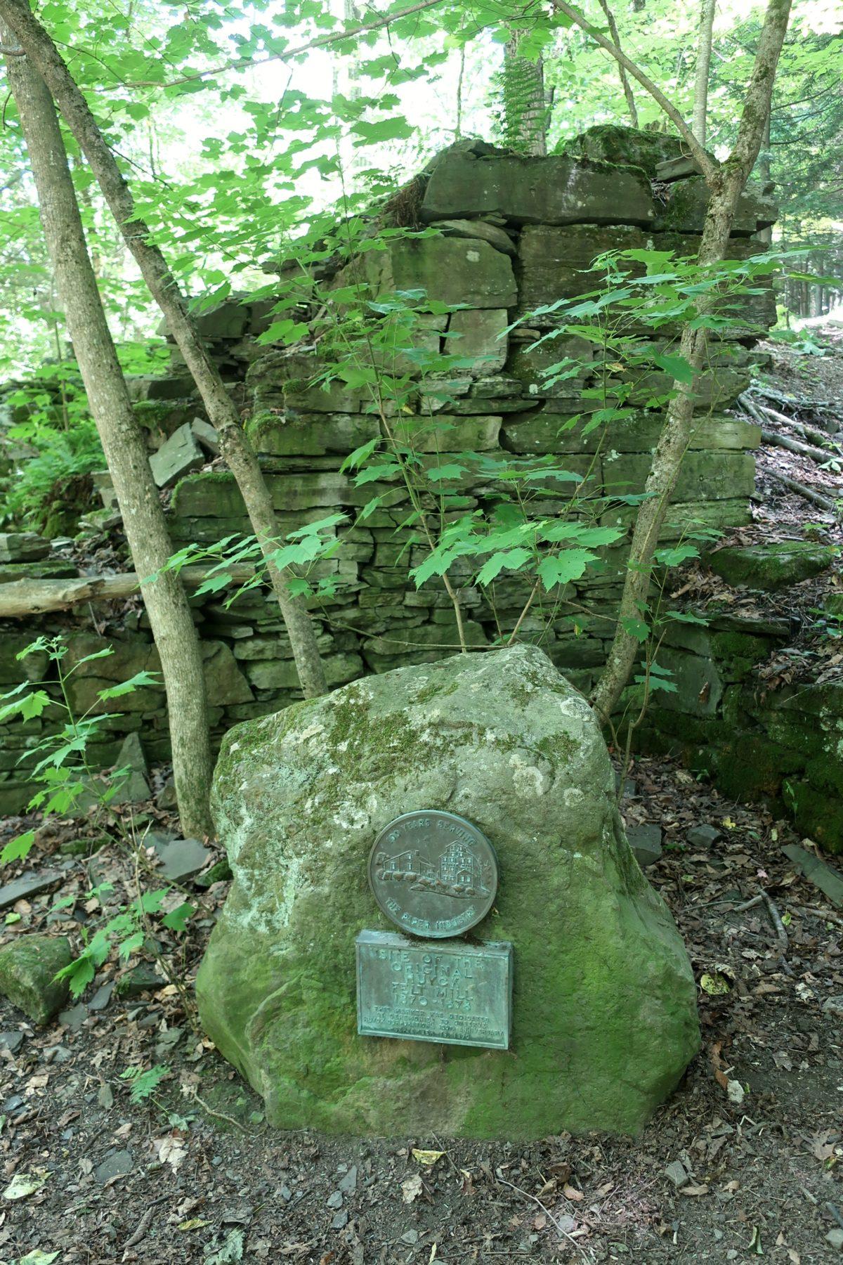 Hyuck Preserve, Rensselaerville, NY