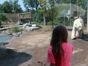 Buffalo Zoo New York