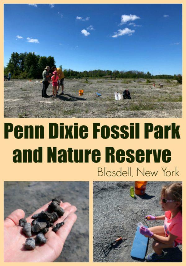 Penn Dixie Fossil Park