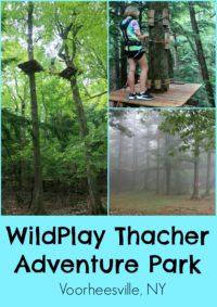 WildPlay Thacher Voorheesville NY