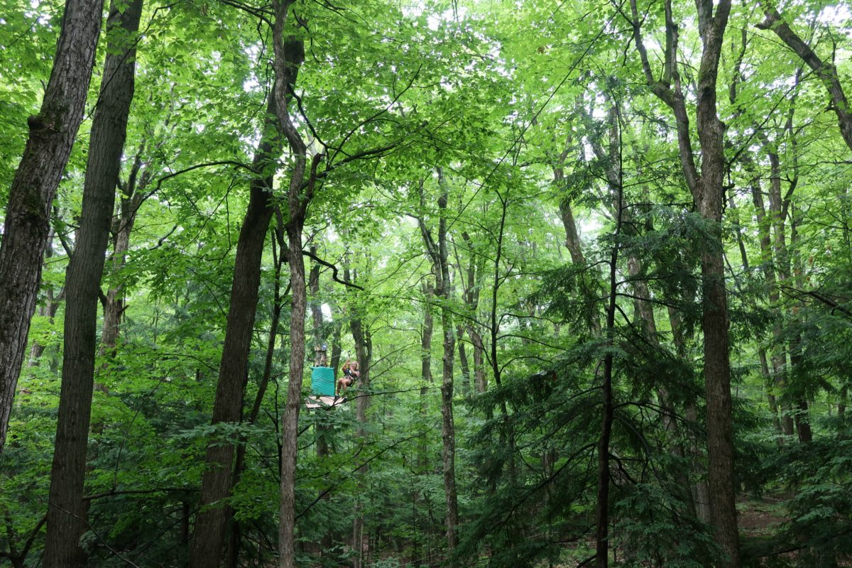 WildPlay Thacher Zipline