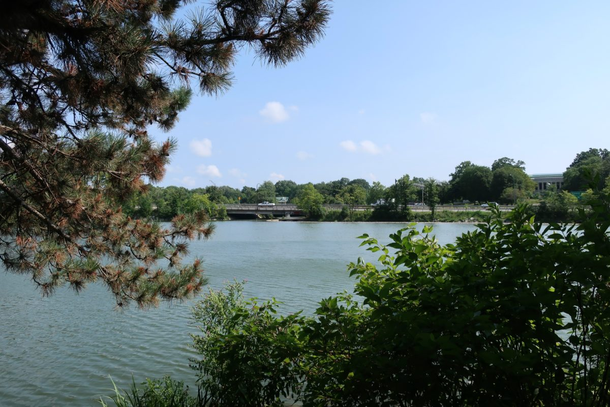 Buffalo Museum of History and Japanese Gardens