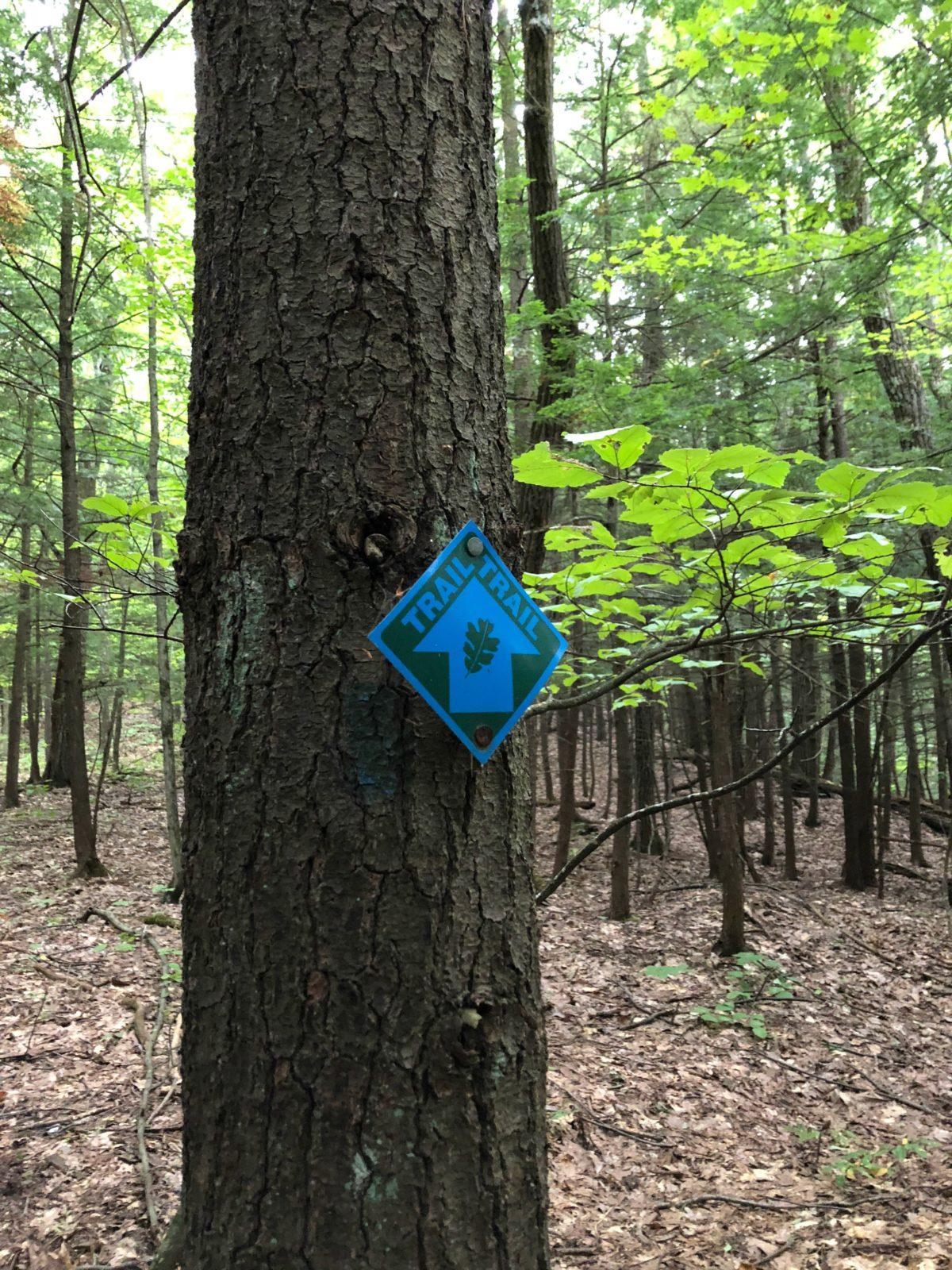 Moccasin Kill Blue Trail