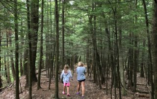 Moccasin Kill Sanctuary Trail