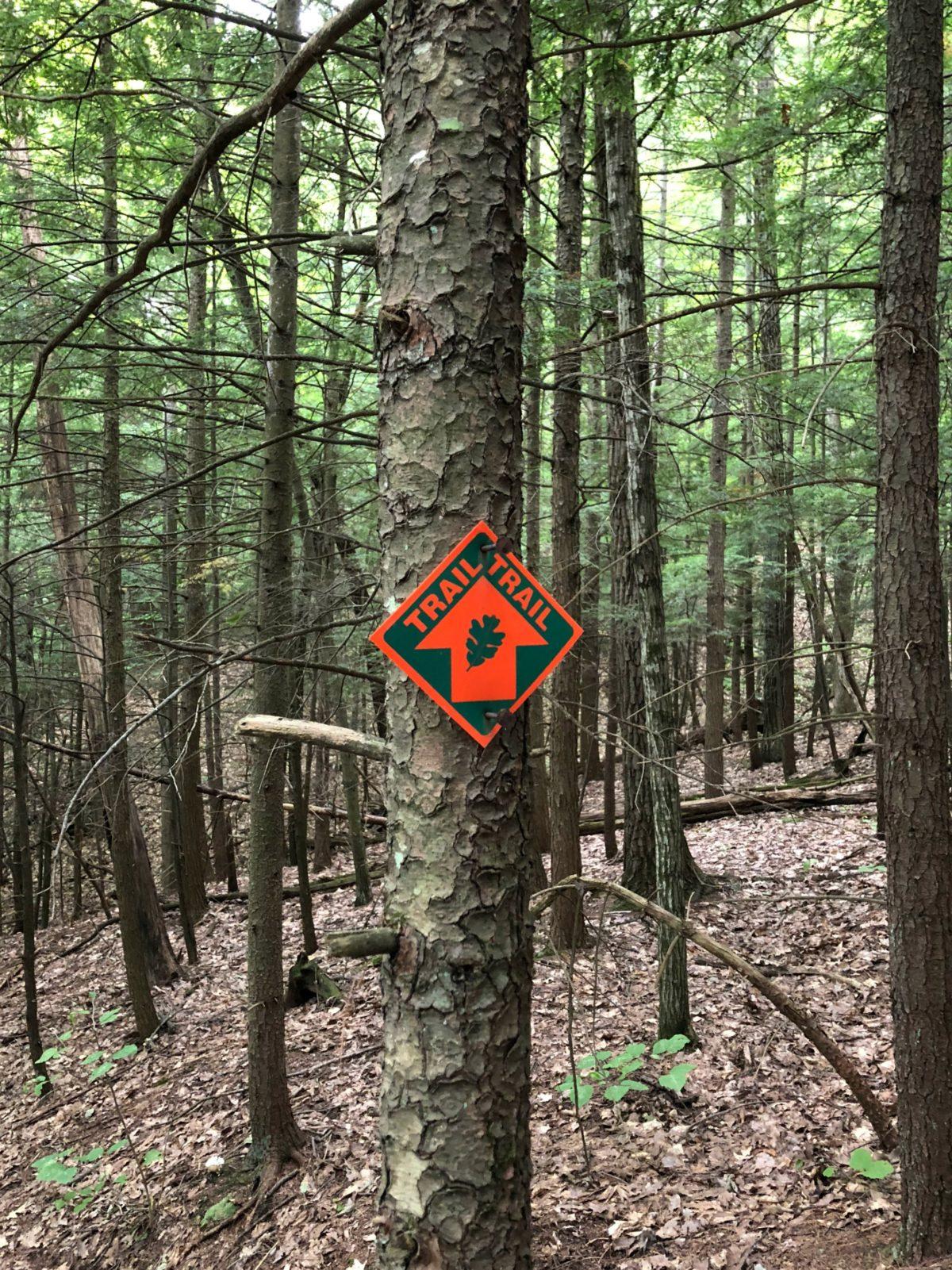 Moccasin Kill Trail Marker