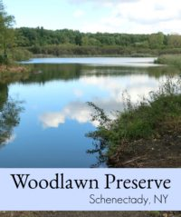 Woodlawn Preserve
