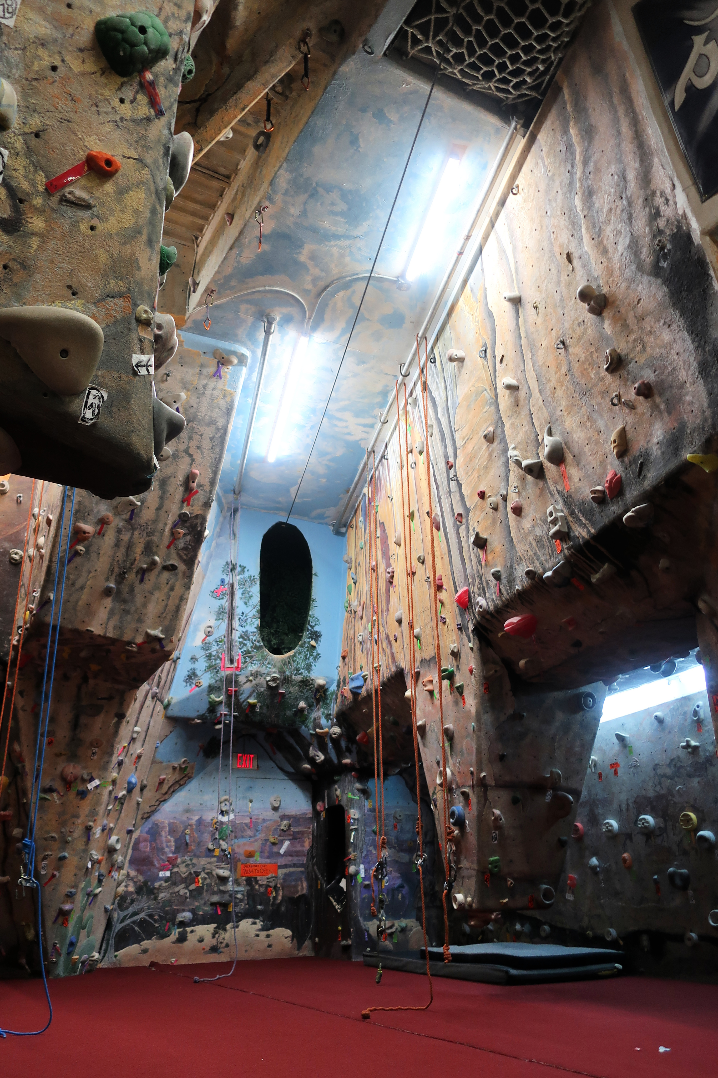 Albany Indoor Rock Gym