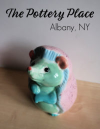 The Pottery Place Albany NY