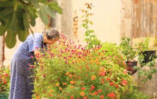 Elderly Gardening Senior Grandmother