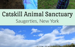Catskill Animal Sanctuary New York