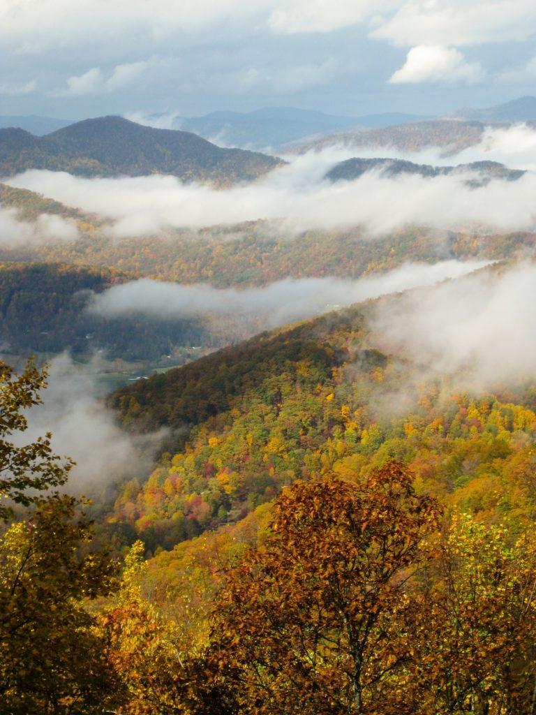 Asheville NC fall foliage