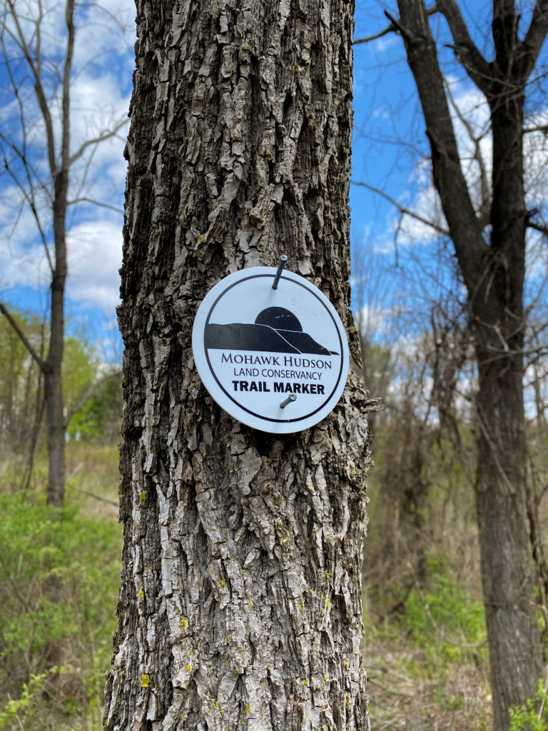 Ashford Glen Preserve Mohawk Conservancy Schenectady