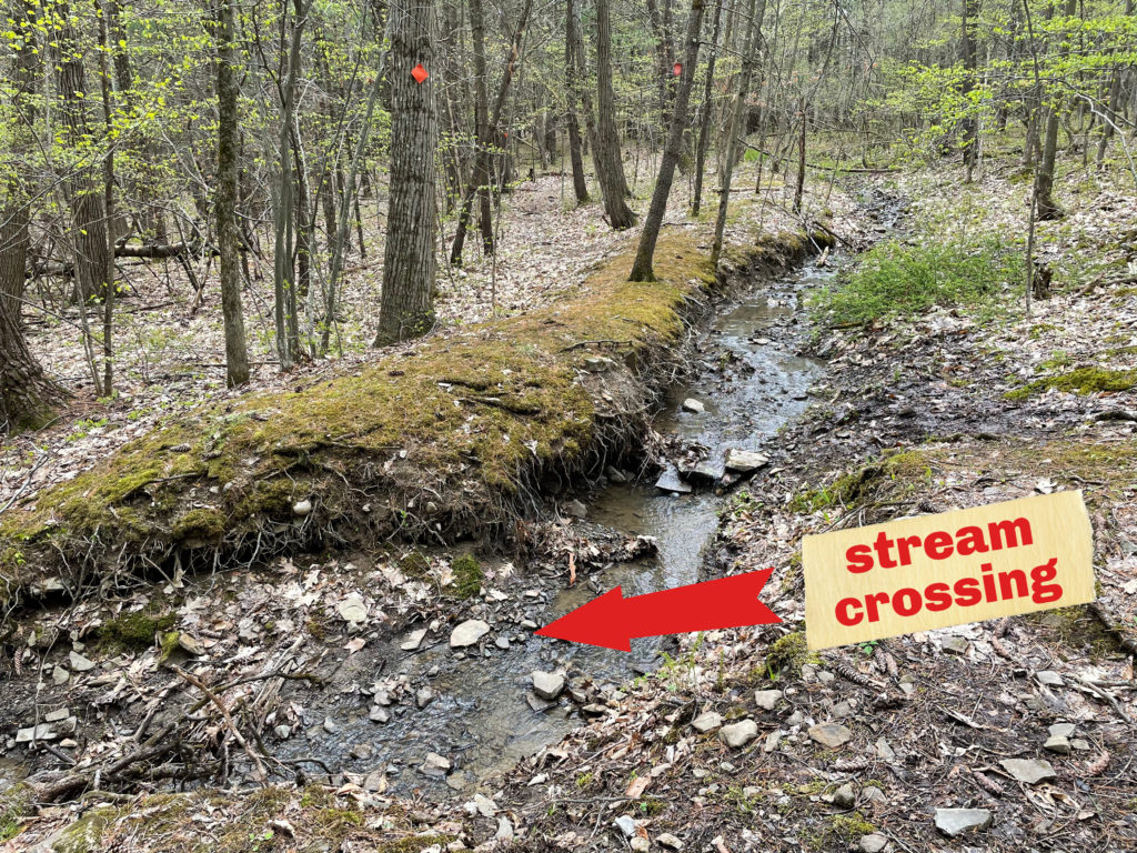 This image has an empty alt attribute; its file name is Kenrosestream-1024x768.jpg